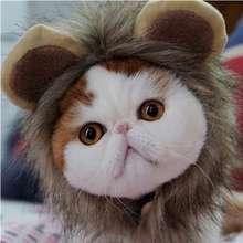 Headdress Wig Hat Pet Dog Cat Cat Headband Puppy Cat Cat Costume Lion Headgear